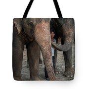 One Man, Two Elephants Tote Bag