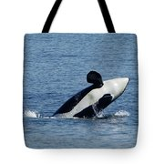 One Orca Leaping Tote Bag