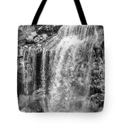 Oregon Wall Art, Oregon Print, Oregon Art, Pacific Northwest, Paulina Falls, Waterfall Art, Travel,  Tote Bag by David Millenheft