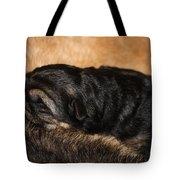 Our Singleton Tote Bag