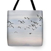 Pacific Ocean Sky With Sea Gull Tote Bag