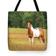 Paint Horse In Meadow Tote Bag