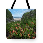 Paintbrush And Ice Plant, Garrapata Tote Bag