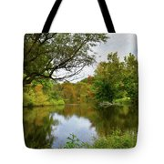 Painted Fall On The Back Pond Tote Bag