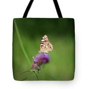 Painted Lady Butterfly In Shadows Tote Bag