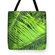 Palms In Light And Shadow Tote Bag