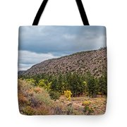 Panorama Of Cliff Dwelling And Fall Cottonwoods In Frijoles Canyon - Bandelier National Monument  Tote Bag