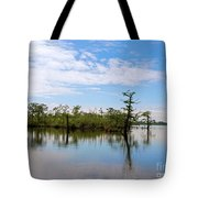 Pasquotank River North Carolina Tote Bag