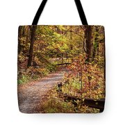 Passage Of Gold Tote Bag