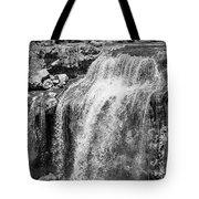 Paulina Falls Black And White Art Tote Bag by David Millenheft