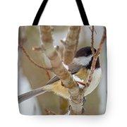 Peaceful Winter Chickadee  Tote Bag