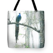 Peacock In Winter Mist Tote Bag