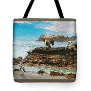 Pelicans At Laguna Beach 3 Tote Bag