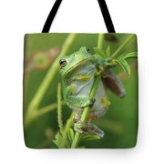 Petals The Tree Frog Tote Bag by James Peterson