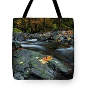Pieces Of Autumn Tote Bag
