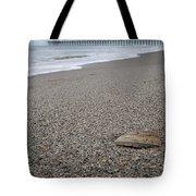 Pier Seashell Tote Bag