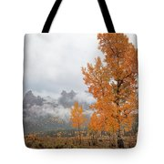 Pillar Of Fire Tote Bag