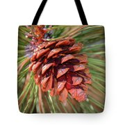 Pine Cone Tote Bag by Patti Deters