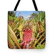 Pineapple Plant Ananas Pico Island Azores Portugal Tote Bag