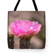 Pink Cactus Bloom Tote Bag