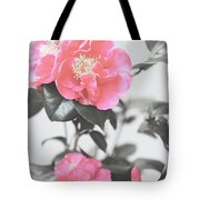 Pink Camellia. Shabby Chic Collection Tote Bag