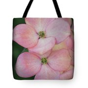 Pink Dogwood Blossoms By Tl Wilson Photography Tote Bag by Teresa Wilson