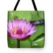 Pink Lotus Water Flower Tote Bag