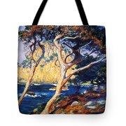 Point Lobos Trees 1919 Tote Bag