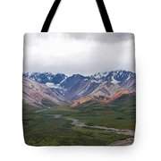 Polychrome Pass In Denali National Park Tote Bag
