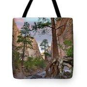 Ponderosa Pines In Slot Canyon Tote Bag