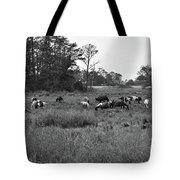 Pony Herd Bnw Tote Bag