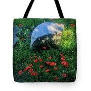Poppies And Rocks Tote Bag
