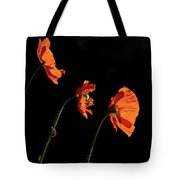 Poppies In The Sun Tote Bag