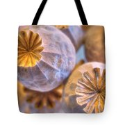 Poppy Seed Pods 2 Tote Bag
