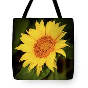Portrait Of A Sunflower Tote Bag by Sabrina L Ryan