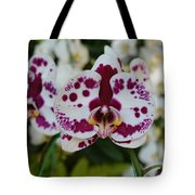 Portrait Of An Orchid Tote Bag