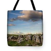 Prairie Bones Tote Bag by Jeff Phillippi