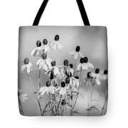 Prairie Coneflowers Black And White Tote Bag by Dan Sproul