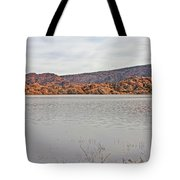 Prescott Arizona Watson Lake Hills Mountains Rocks Water Grasses Cloudy Sky 3142019 4920 Tote Bag