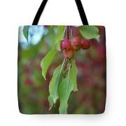 Pretty Cherries Hanging From Tree Tote Bag