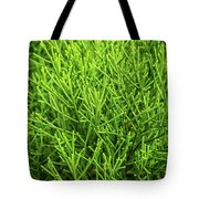Pretty Green Tote Bag by Nick Bywater