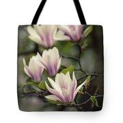 Pretty White And Pink Magnolia Tote Bag