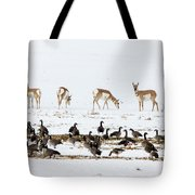 Pronghorn Antelope And Geese Tote Bag