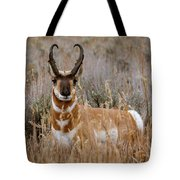 Pronghorn In The Sage Tote Bag
