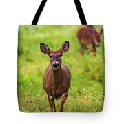 Protective Mother Deer Tote Bag by Dan Sproul