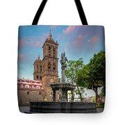 Puebla Zocalo And Cathedral Tote Bag