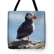 Puffin On Clifftop. Tote Bag by David Birchall