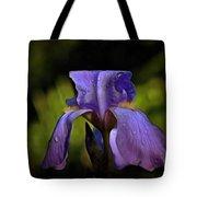 Purple Iris And Dewdrops II Tote Bag