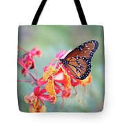 Queen Butterfly On Mexican Bird Of Paradise  Tote Bag