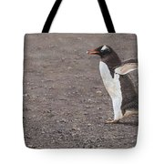 Quick Hurry - Gentoo Penguin By Alan M Hunt Tote Bag
